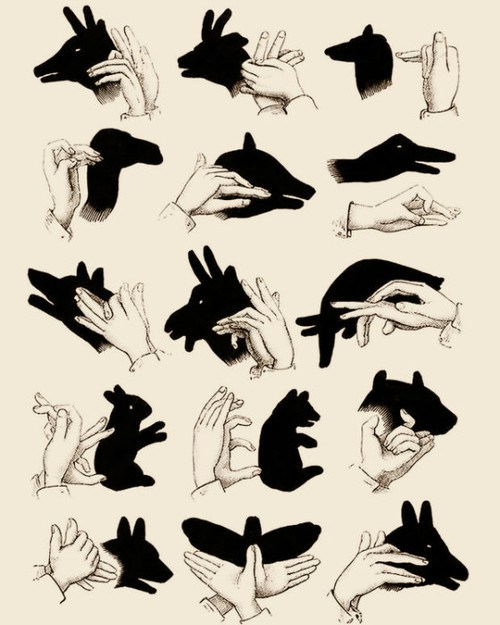 shadow-puppets-print