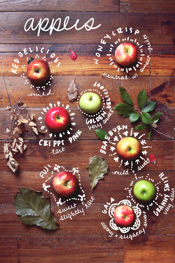 Types-of-apples