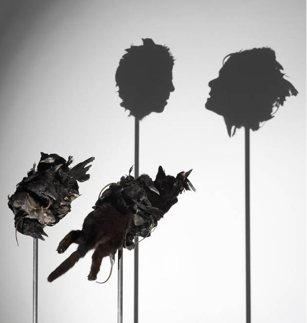 Tim_Noble_Sue_Webster_shadow_sculpture_5-normal